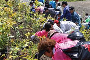 2013年5月に実施した第2期植樹会の様子
